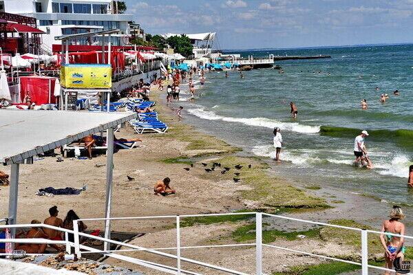 Пляж Аркадии усеян мусром и крысами.