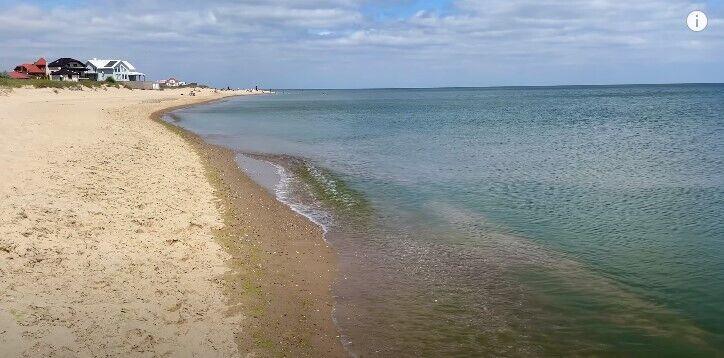 На берегу виднеются водоросли