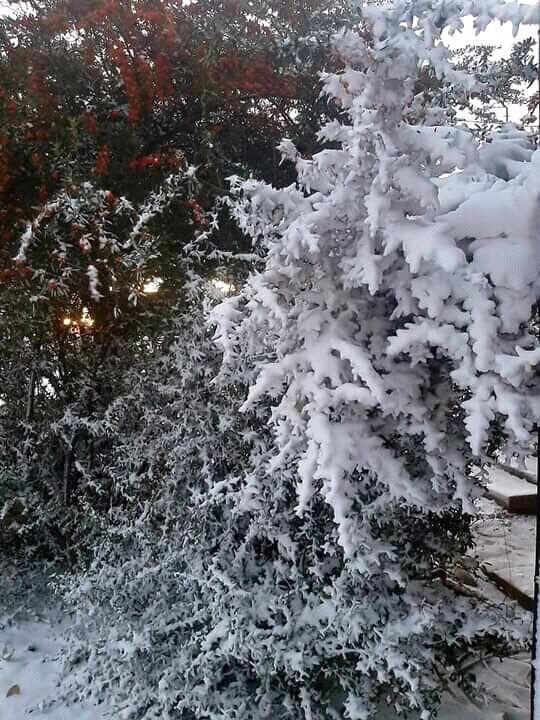 Місцями ПАР сильно засипало снігом.