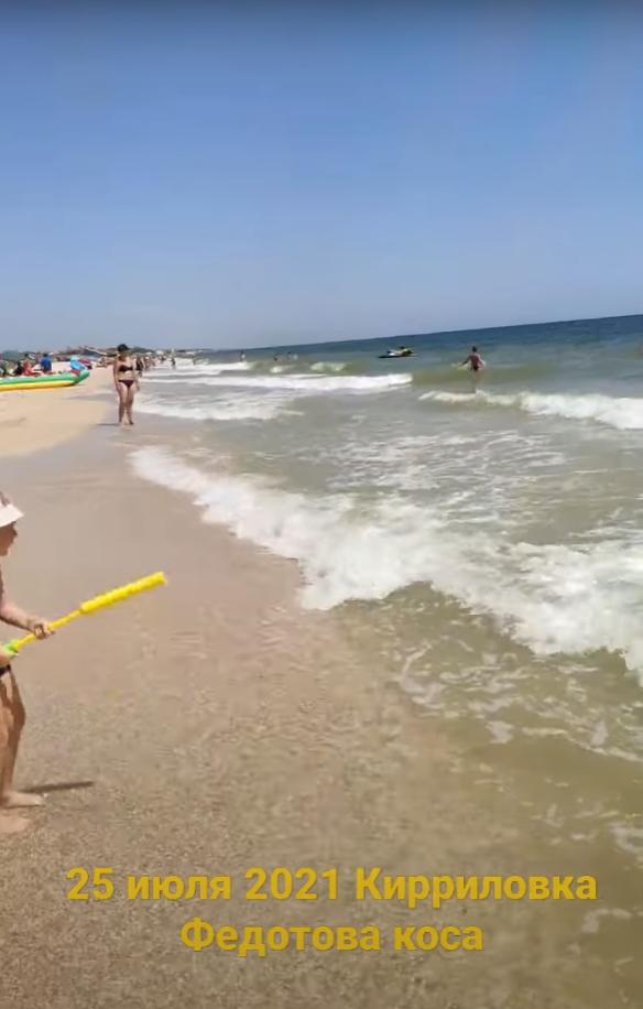 Автор відео стверджує, що бліх і медуз немає.