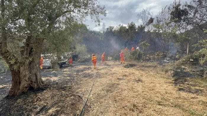 Евросоюз отправил четыре самолета для борьбы с пожарами на итальянском острове Сардиния.
