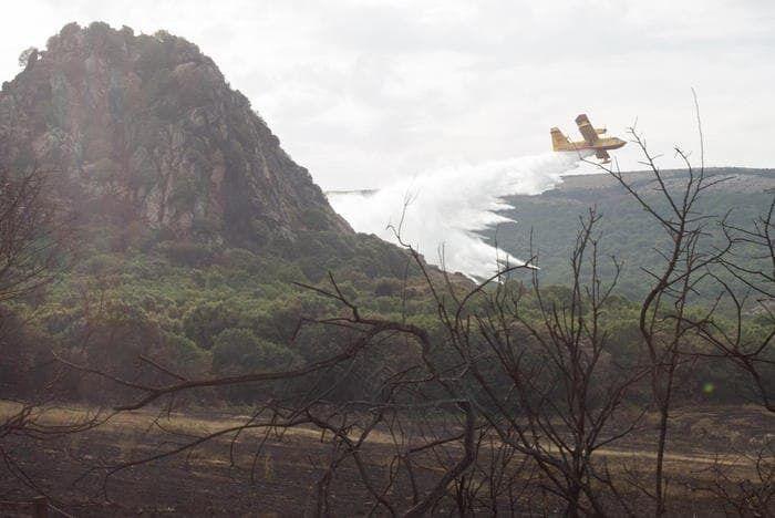 Комиссия ЕС сообщила, что отправила на Сардинию два самолета Canadair.