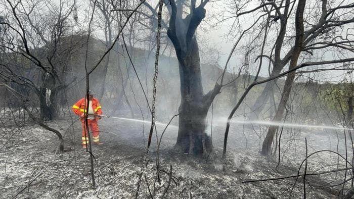Со вчерашнего дня продолжается пожар также в районе Агридженто.