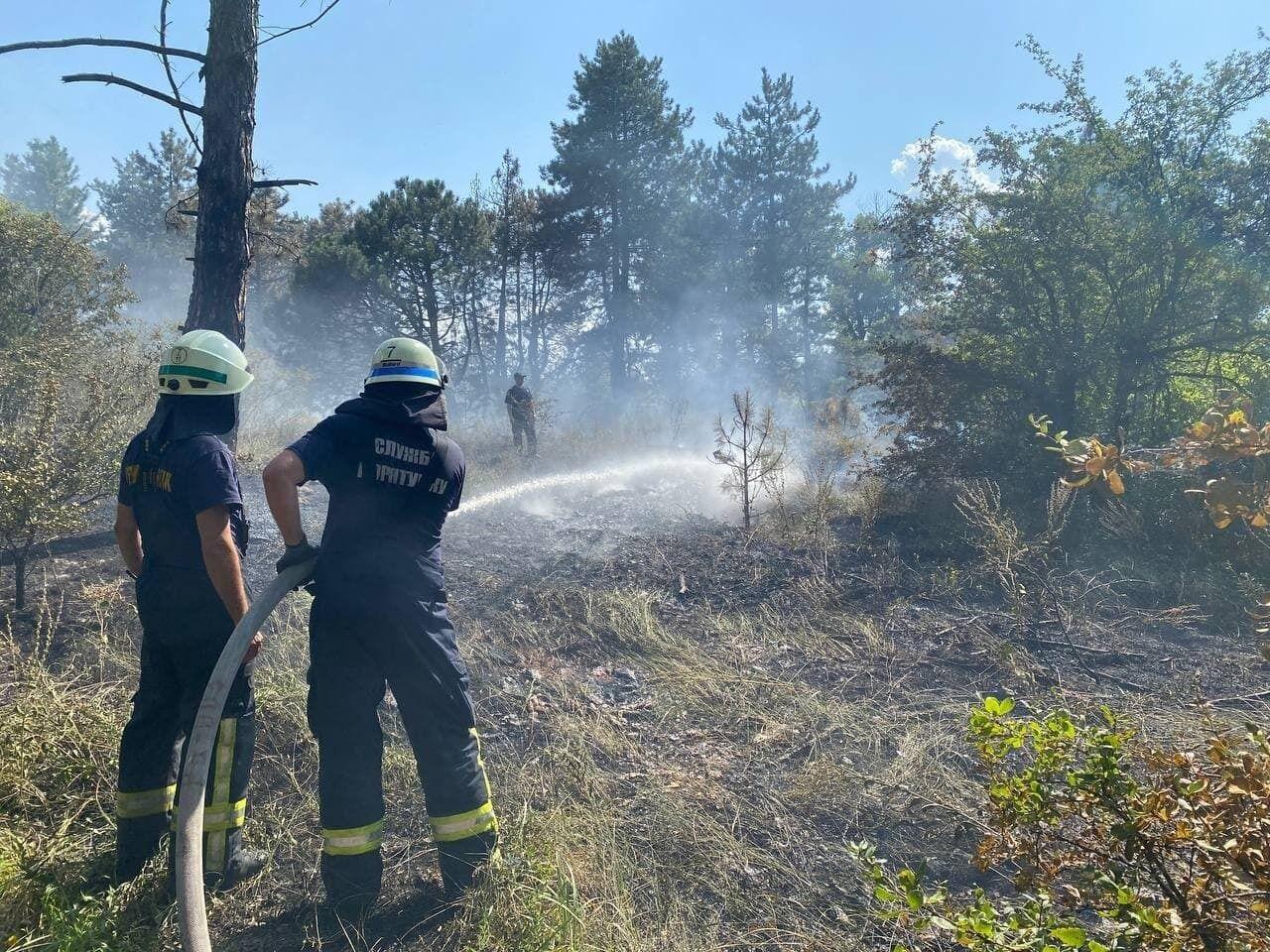 На Хортиці сталася масштабна пожежа, підозрюють підпал. Фото і відео