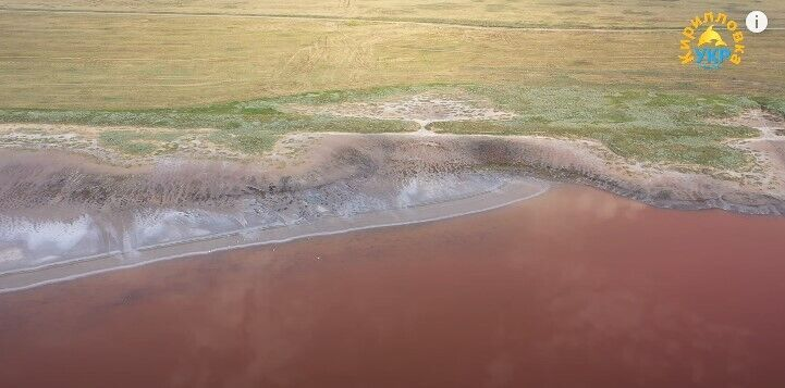 На Рожевому озері немає медуз