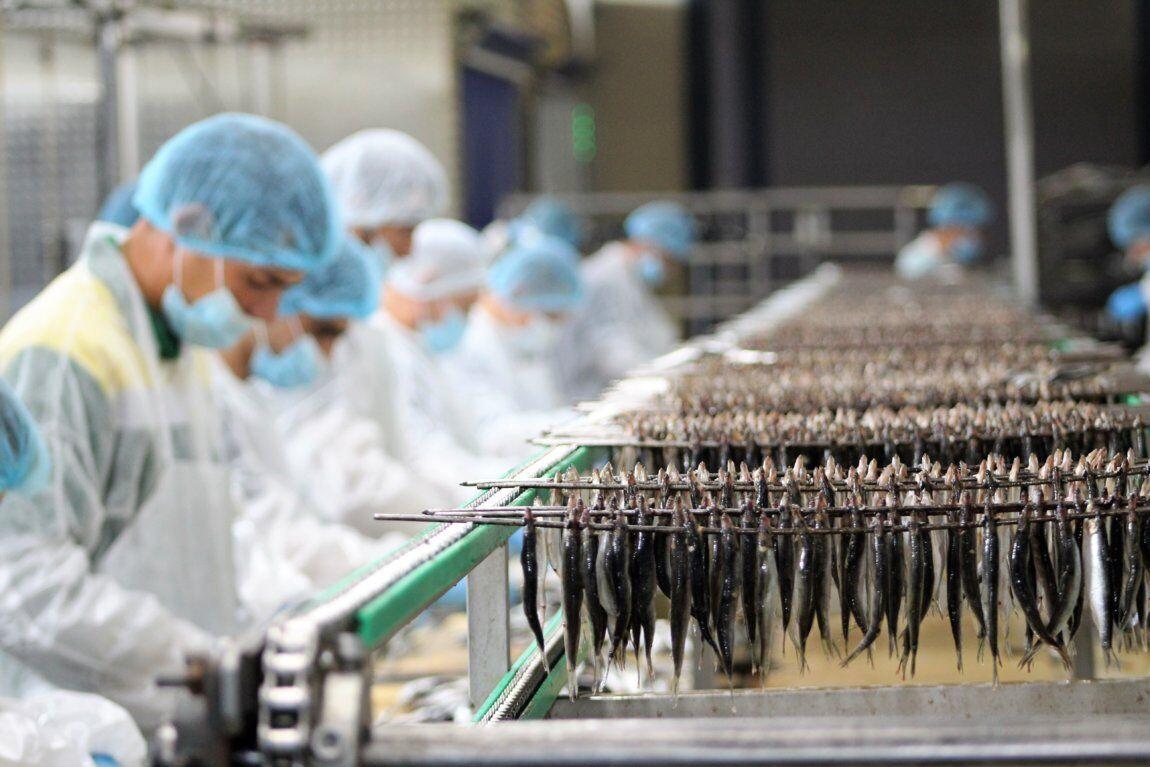 Українці в Польщі займаються обробленням риби