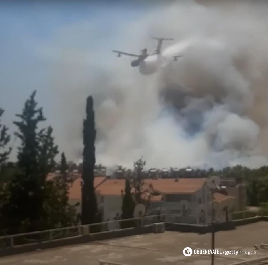 Огонь уничтожил 100 гектар леса.