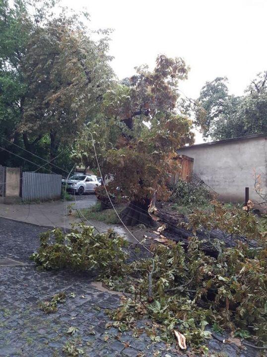 Буря в Чернівцях