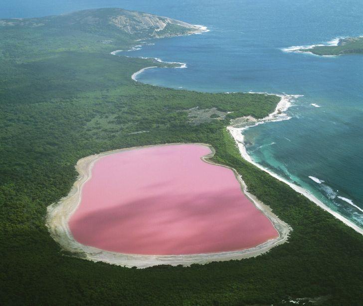 Розовое озеро Хильер в Австралии.