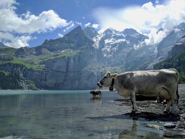 Озеро Ешинен в Швейцарии.