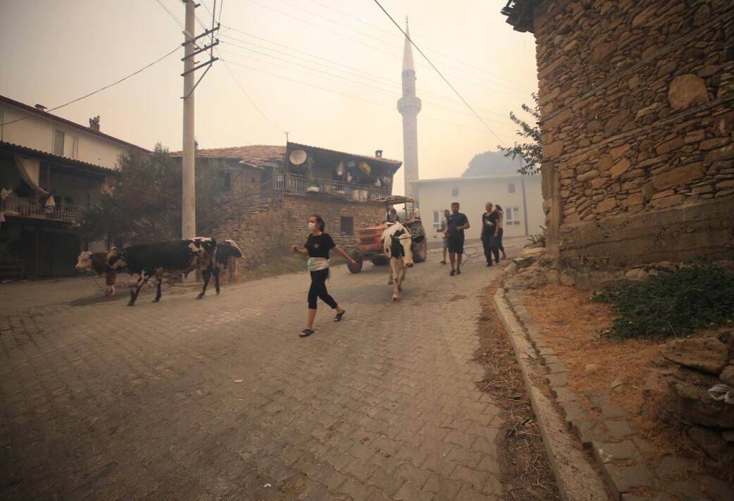 Людей евакуюють через пожежі в Туреччині.