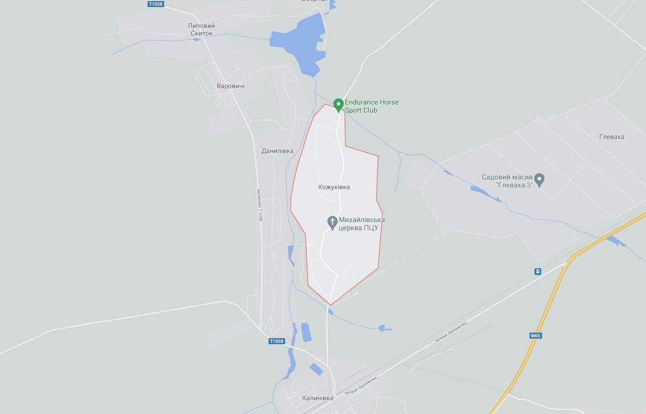 Інцидент стався в селі Кожухівка Київської області.