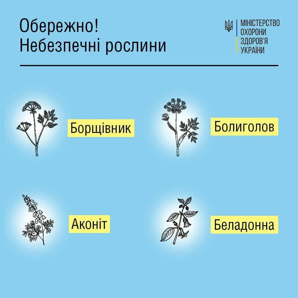 Небезпечні отруйні рослини в Україні