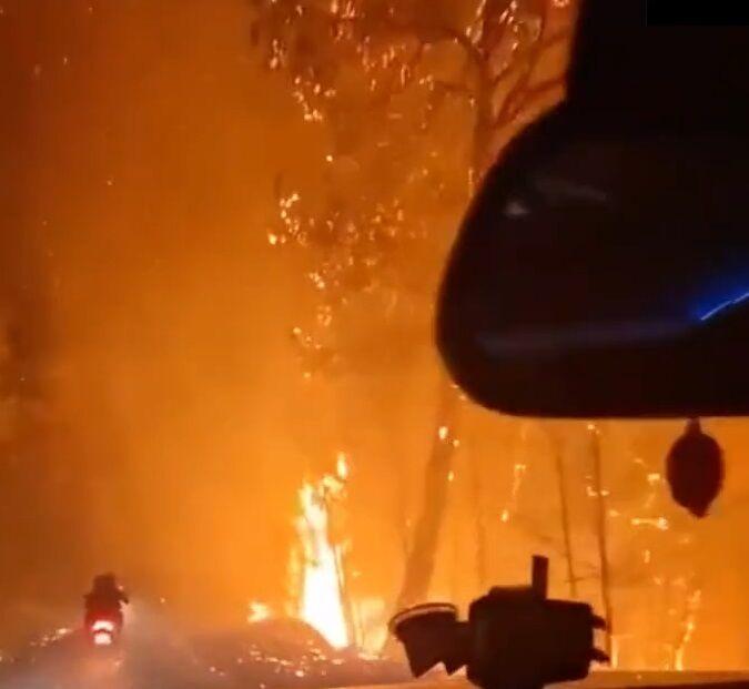 У Туреччині продовжують гасити масштабні пожежі.