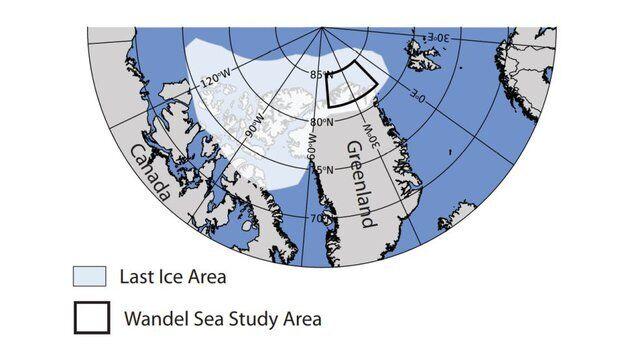 """Карта """"последнего ледяного региона"""" в Арктике"""
