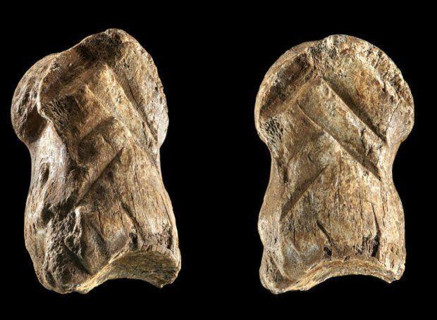 Кость оленя с вырезанным орнаментом