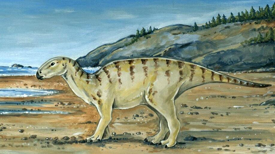 Изображение примерного внешнего вида динозавра