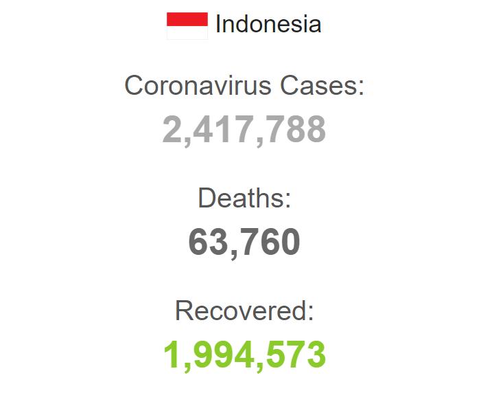 Статистика заболеваемости в Индонезии.