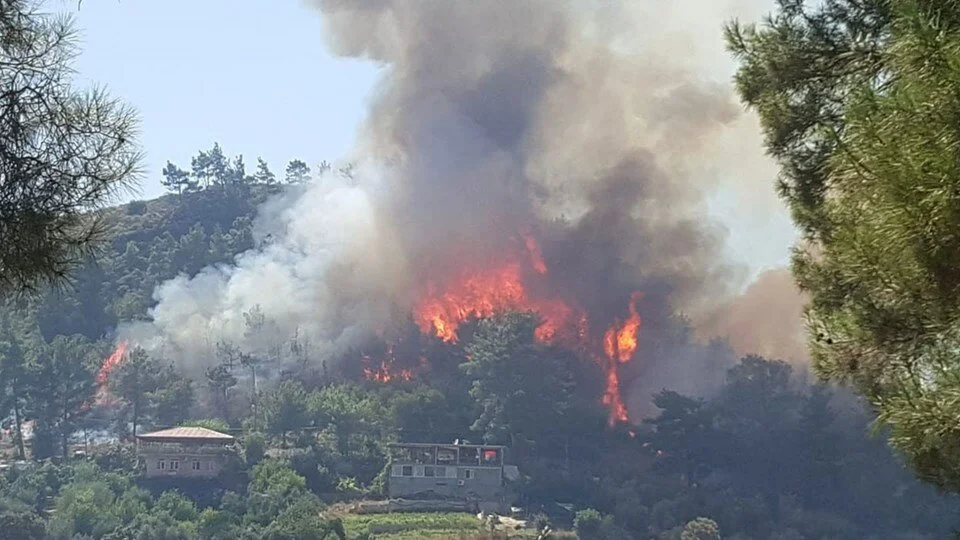 У Туреччині спалахнули 107 лісових пожеж