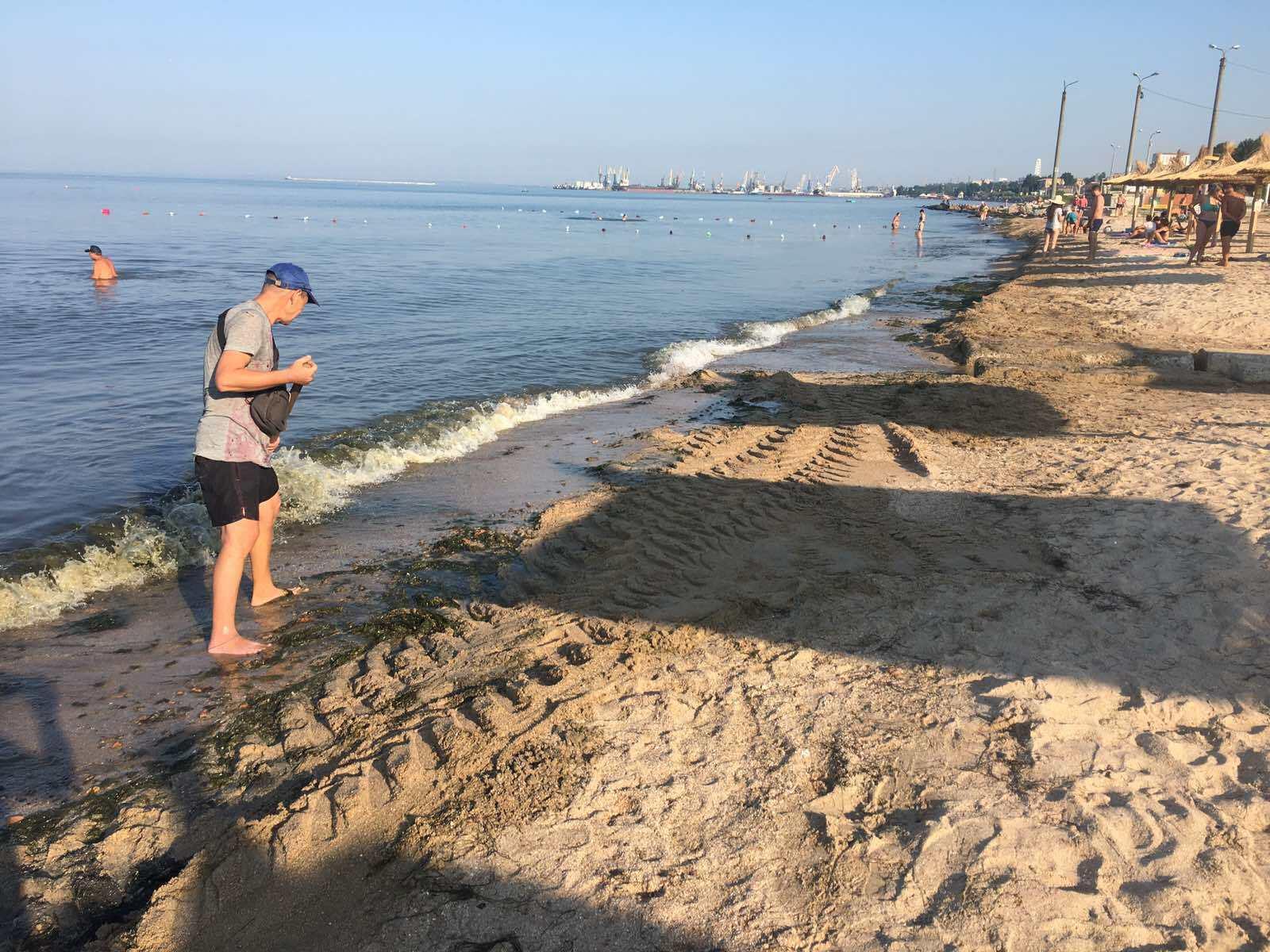 В Бердянске убирают с пляжей водоросли
