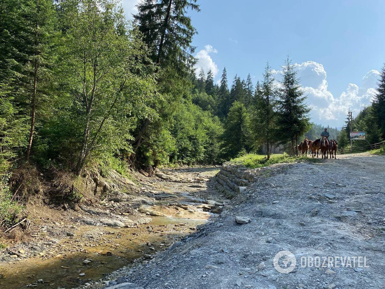 У Верховині прогулянка на конях починається біля підніжжя гори