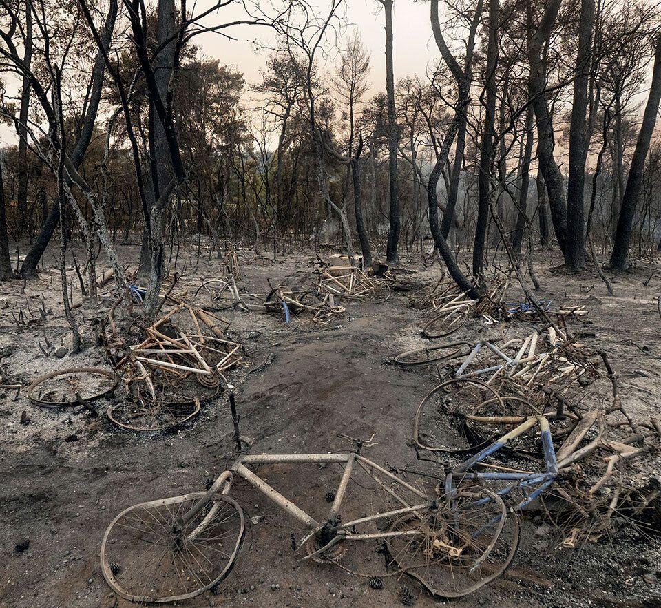Из-за пожара сгорел лес.