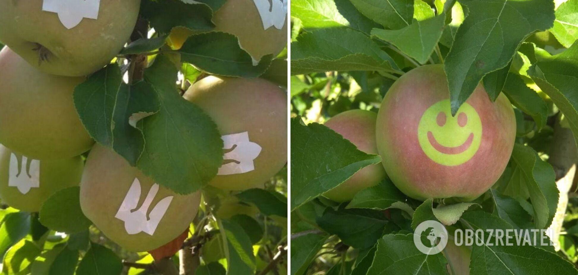 """Яблука з тризубом і """"смайликами"""""""