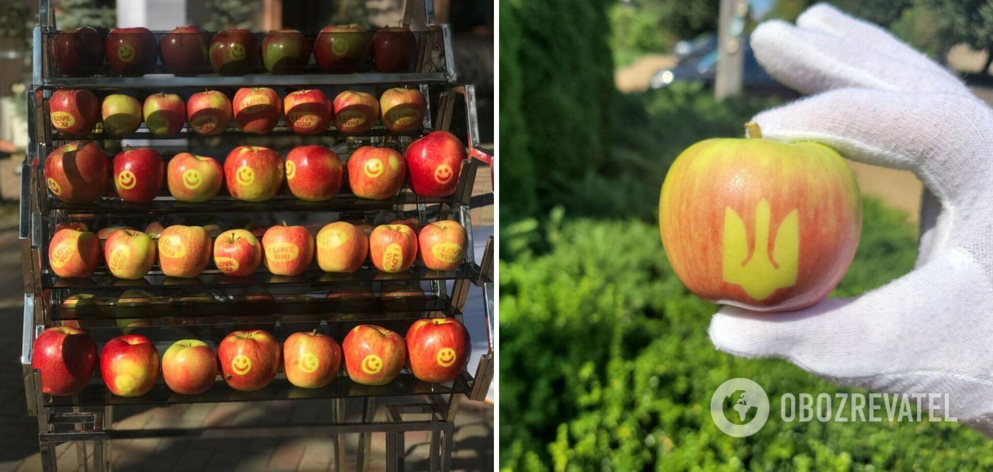Щоб виростити яблука із зображенняи, на них наносять наклейки