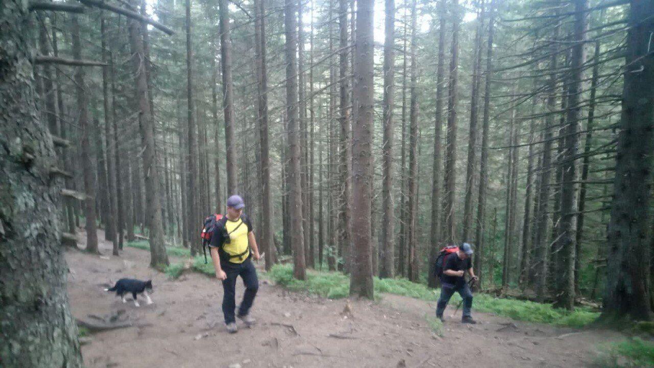 Мальчик отстал от группы туристов во время подъема на гору Говерла