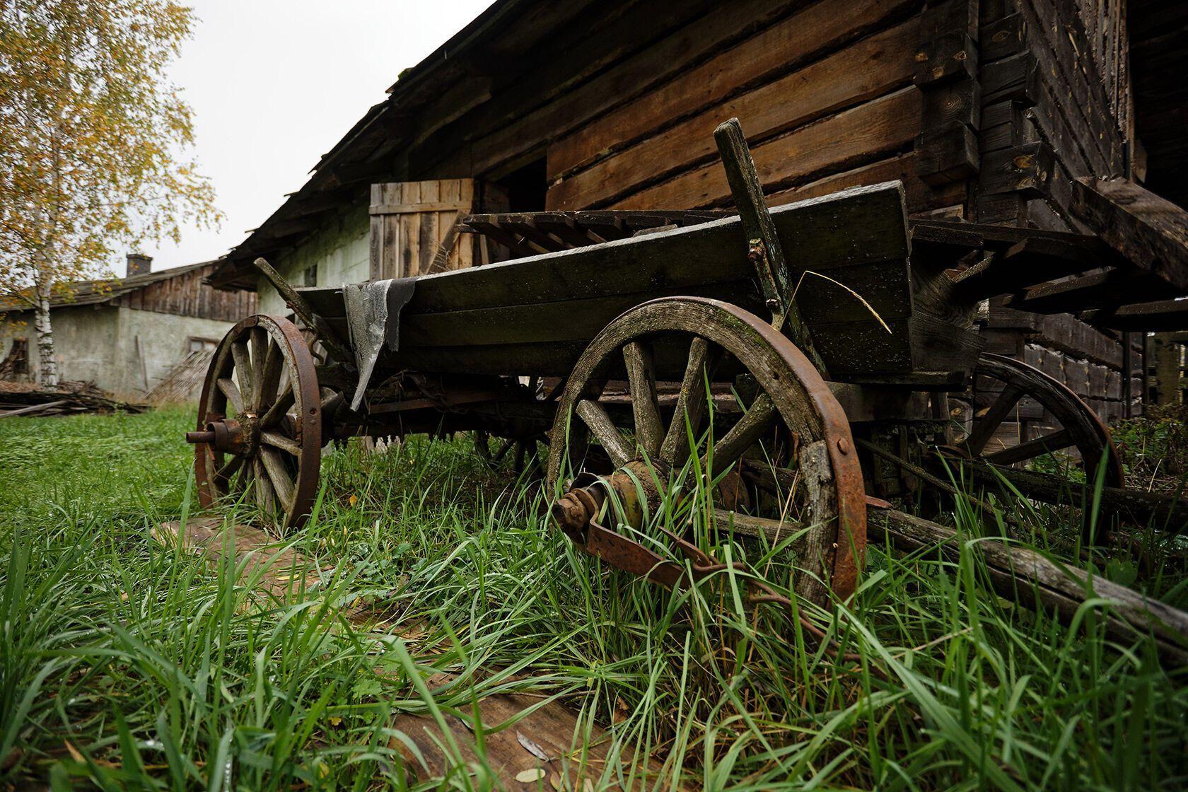 Искусственный хутор зарос настоящей травой.