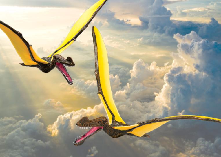 Приблизительное изображение птерозавра