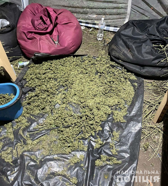 При обыске было изъято наркотическое сырье.