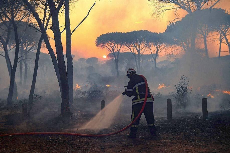 Вогонь спустошив понад 7 тисяч гектарів землі