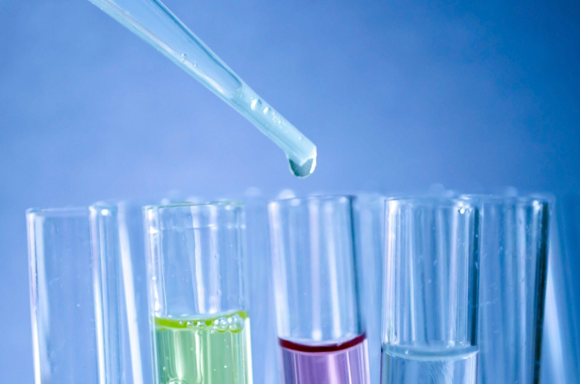 Созданные антитела испытали на овцах