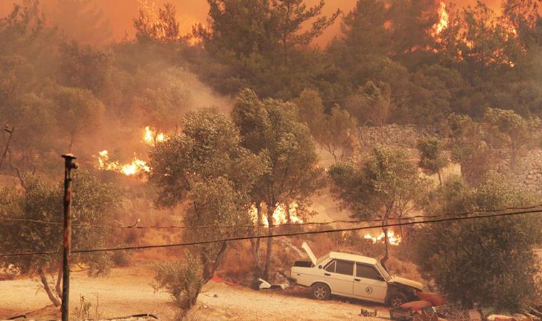 У Туреччині зранку 2 серпня продовжують гасити пожежі.