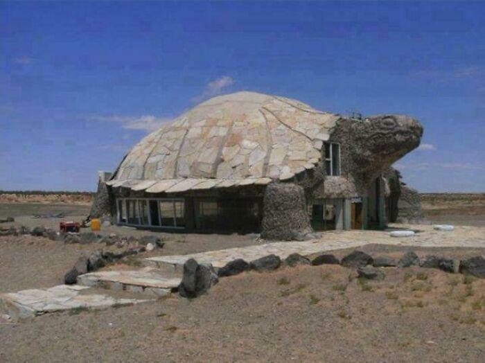 Посеред поля стоїть будинок у вигляді черепахи