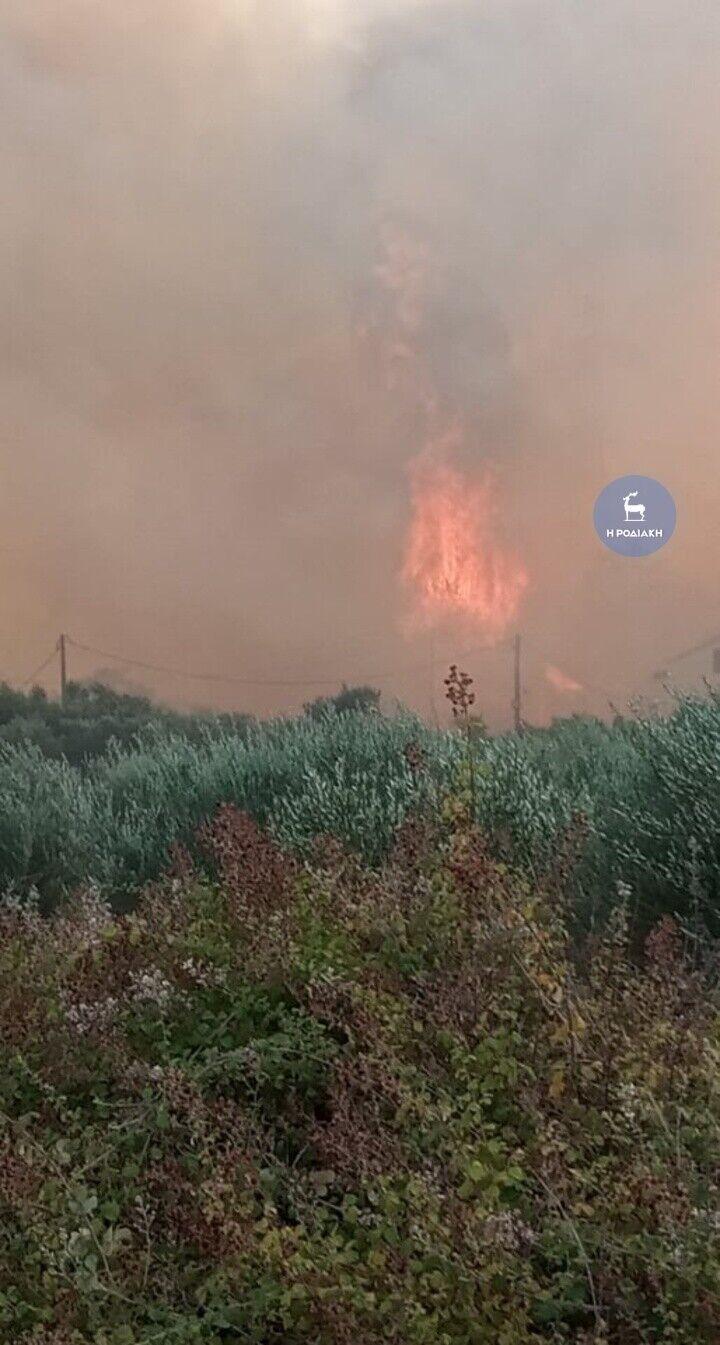 Гасіння лісових пожеж у Родосі.
