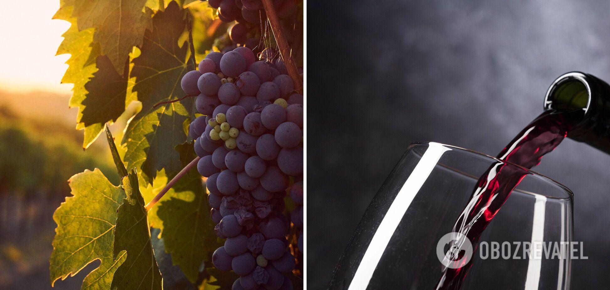 Вино з прянощами