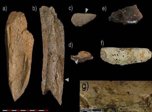Археологи нашли останки