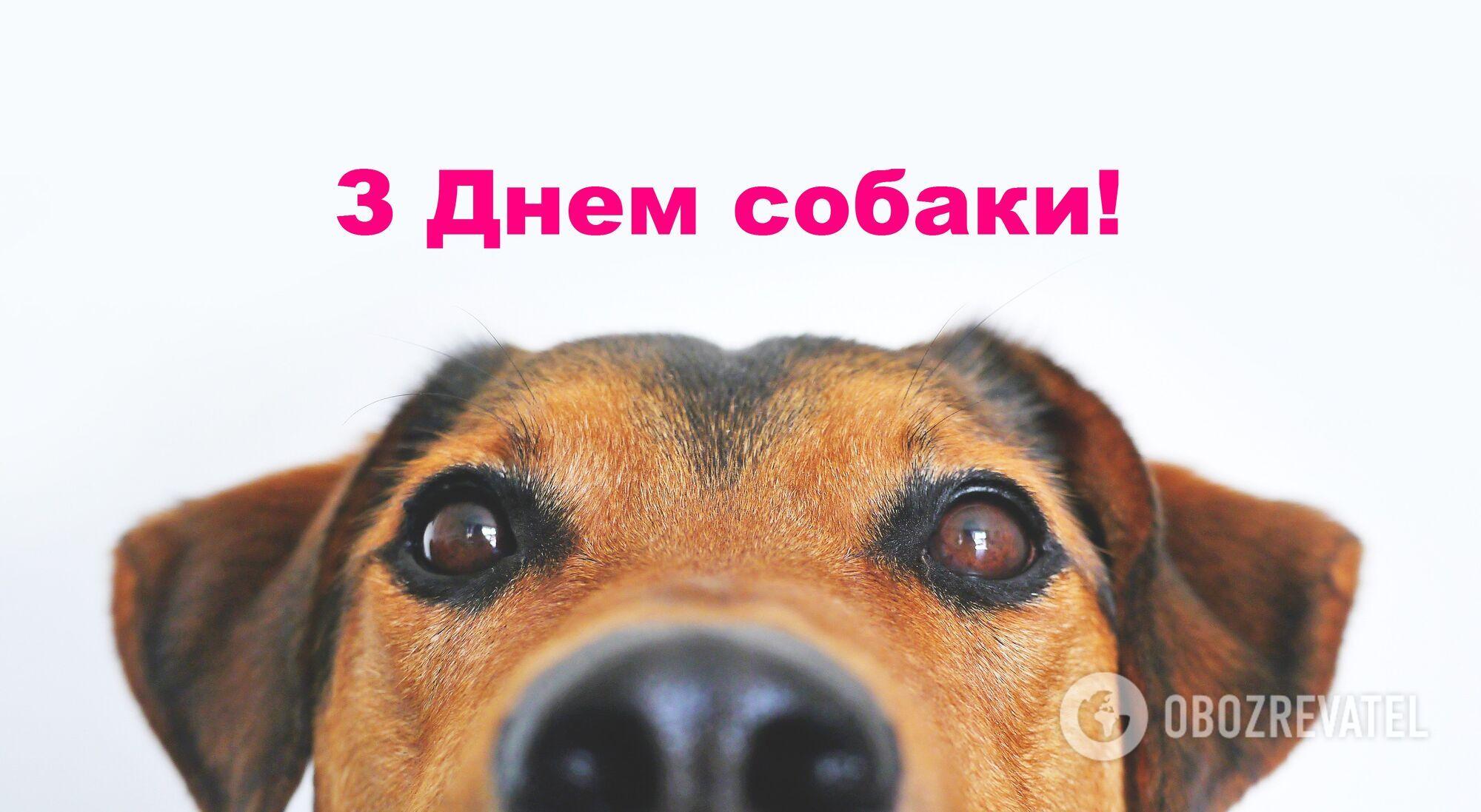Поздравления с Днем собаки