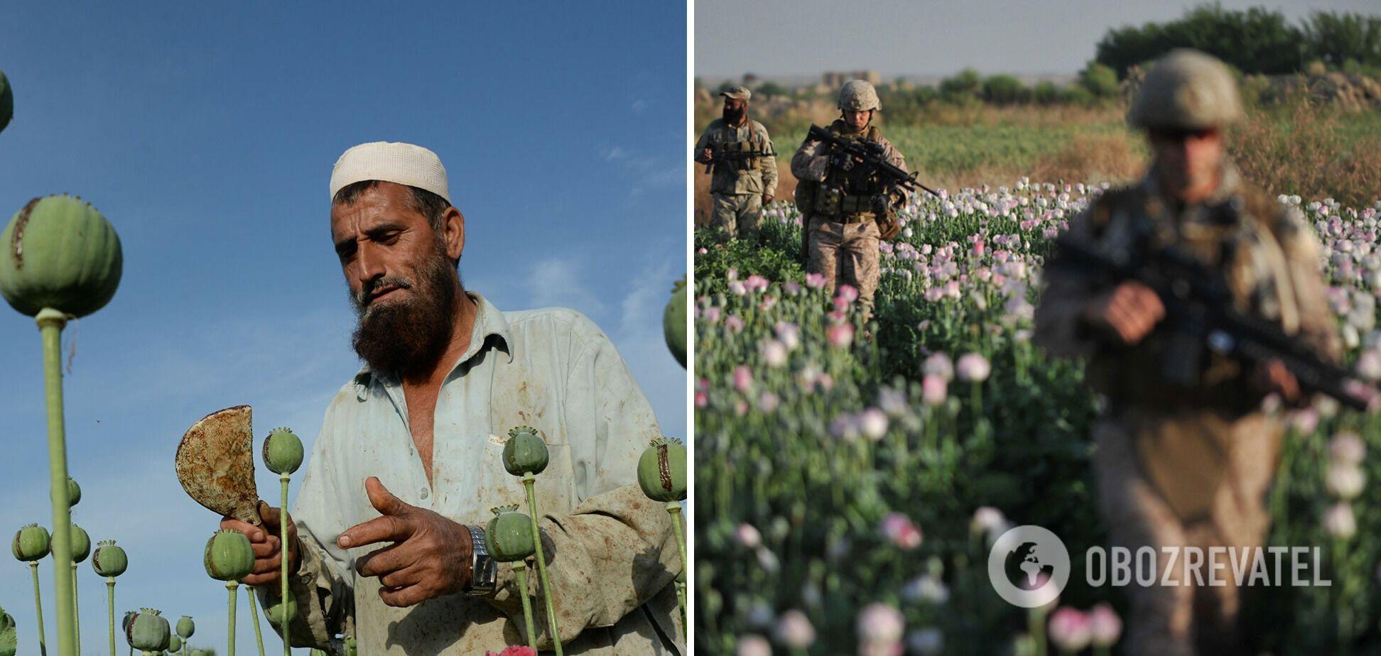 Основой экономики Афганистана сегодня остается опий