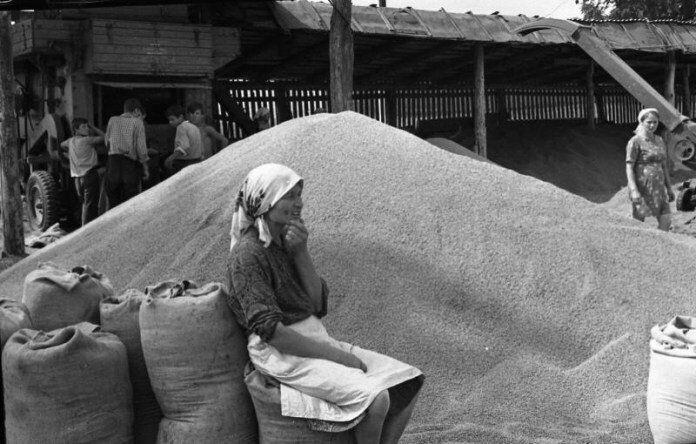 Колхоз на Львовщине, 1970-е годы