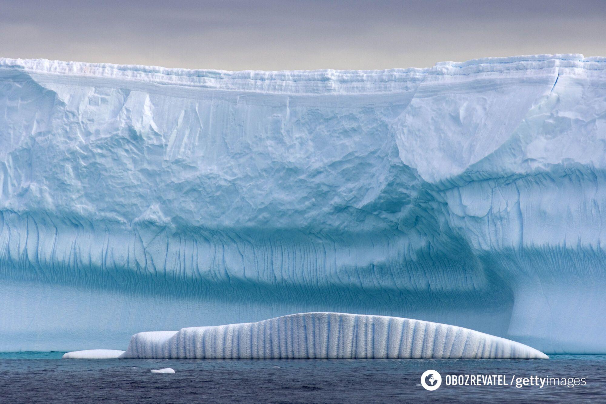 Антарктида