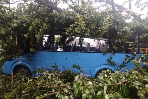 Унаслідок стихійного лиха є постраждалі.