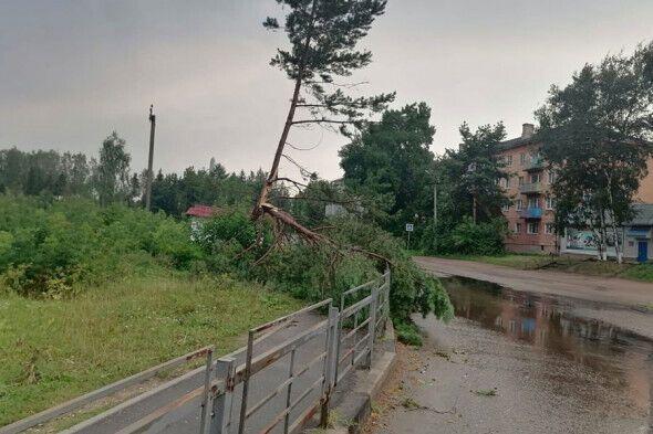 Три людини загинули внаслідок урагану в Тверській області.
