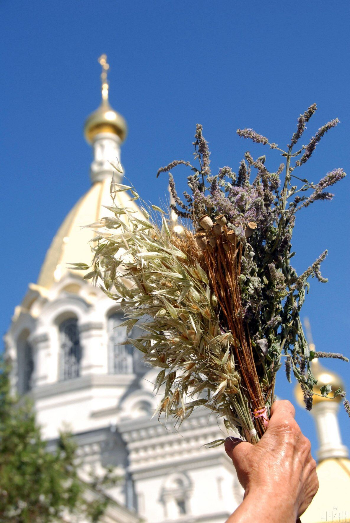 Медовый Спас ежегодно отмечается 14 августа