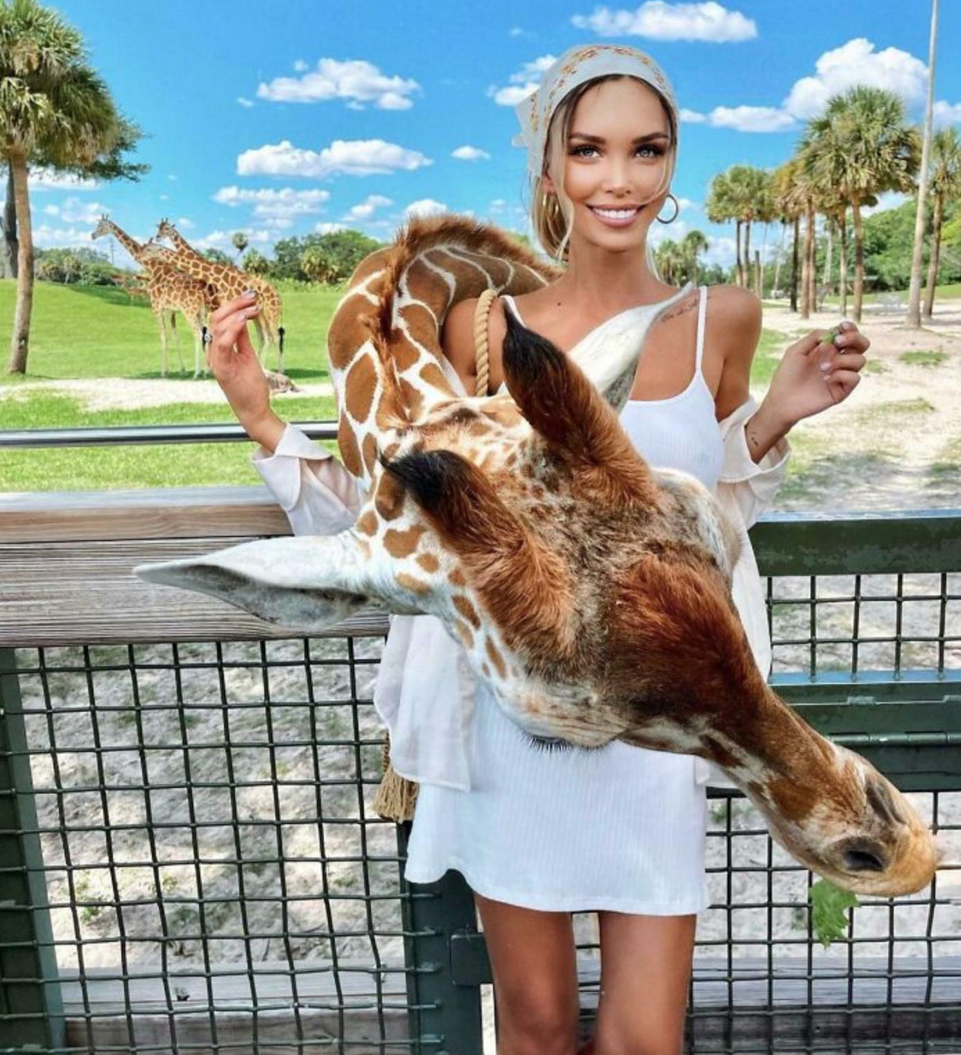 Дівчина додала фотошопу навіть для жирафи