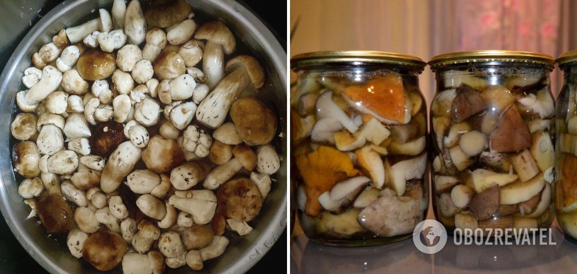 Польські гриби з гвоздикою