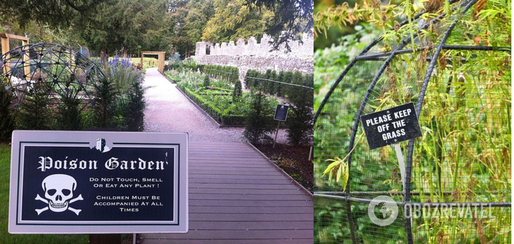 Ядовитый сад является частью комплекса Сад Алника в Нортумберленде