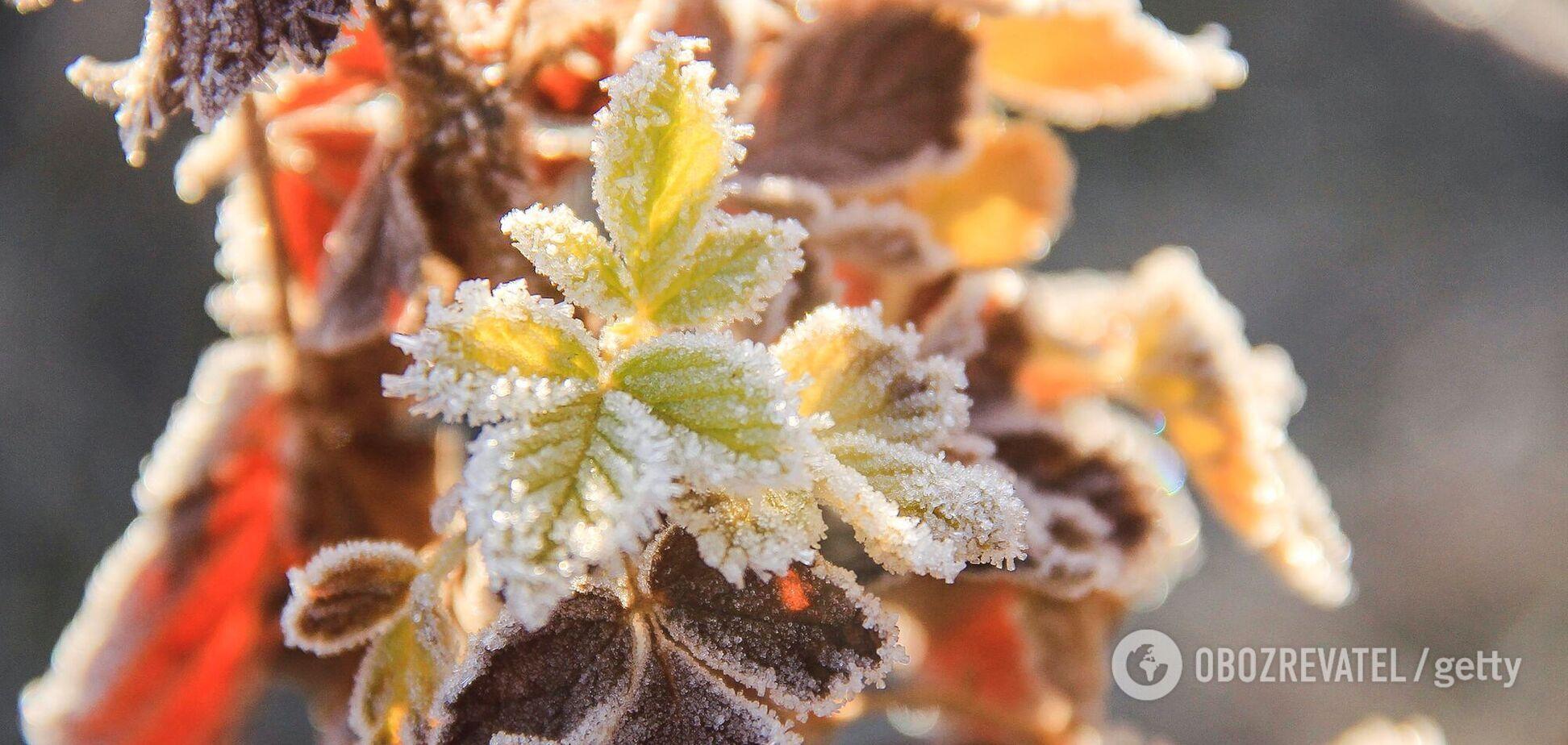 Заморозки в Украине возможны в конце октября.